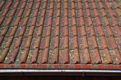 Telhas e calha de telhado sujas que exigem a limpeza Fotos de Stock