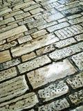 Telhas romanas Foto de Stock