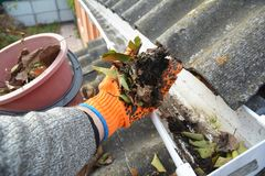 Telhe a limpeza da calha das folhas no outono com a mão Pontas da limpeza da calha do telhado fotos de stock royalty free
