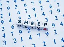 Tellende schapen stock foto's