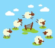 Tellende schapen aan slaapconcept Stock Foto's