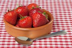 Teller der Erdbeeren auf roter Gingham-Tischdecke Stockfotos