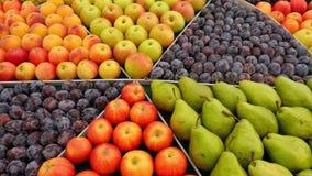 Teller met fruit stock footage
