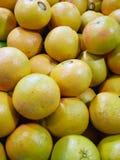 Teller met rode grapefruits Stock Foto's