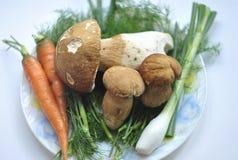 Teller mit Pilzen und frische Kräuter und Gemüse lizenzfreie stockfotografie