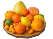 Teller mit Zitrusfrüchten stockbild