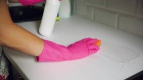 Teller van de vrouwen de Schoonmakende Keuken Huishoudenmateriaal, voorjaarsschoonmaak stock video