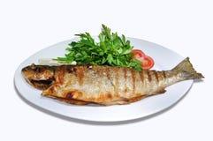 Teller von Fischen Stockbild