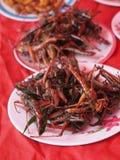 Teller von gebratenen Insekten lizenzfreie stockfotos