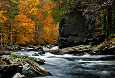 Tellico River autumn colors with blurred rushing water. royalty free stock images