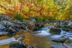 Tellico River Royalty Free Stock Photography