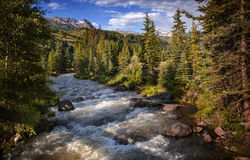 Telluride, Colorado, Forest River at Sunset Stock Photos