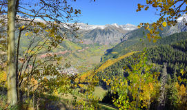 Telluride in the fall with yellow aspen and snow covered mountains Royalty Free Stock Images