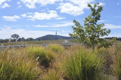 Telstra Tower Black Mountain Australia capital city of Canberra. Landscape view of Telstra Tower Black Mountain Australia capital city of Canberra stock photography