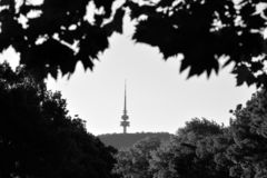 Telstra Tower Black Mountain Australia capital city of Canberra. Telstra Tower a telecommunications tower and lookout that is situated above the summit of Black royalty free stock photography