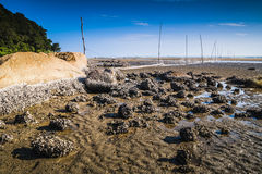 Teluk Sisek Beach Stock Photography