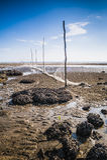 Teluk Sisek Beach Stock Photo