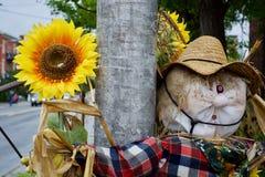 Tema bonito do outono Fotos de Stock Royalty Free
