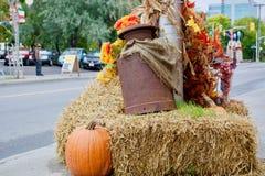 Tema bonito do outono Foto de Stock Royalty Free