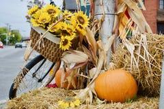 Tema bonito do outono Imagem de Stock