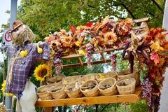 Tema bonito do outono Imagem de Stock Royalty Free