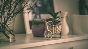 tema das decorações do casamento, flores no interior branco - vintage f Imagem de Stock