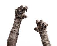 Tema de Halloween: viejas manos terribles de la momia en un fondo blanco Imágenes de archivo libres de regalías