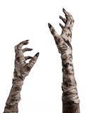 Tema de Halloween: viejas manos terribles de la momia en un fondo blanco Imagen de archivo