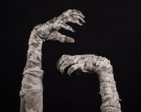 Tema de Halloween: viejas manos terribles de la momia en un fondo negro Imagen de archivo