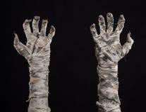 Tema de Halloween: viejas manos terribles de la momia en un fondo negro Imagenes de archivo