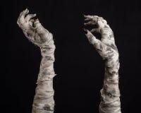 Tema de Halloween: viejas manos terribles de la momia en un fondo negro Imágenes de archivo libres de regalías