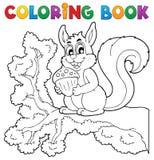 Tema 1 de la ardilla del libro de colorear Imagen de archivo libre de regalías
