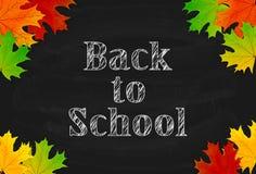 Tema de la escuela con la pizarra y las hojas de arce negras Fotografía de archivo libre de regalías