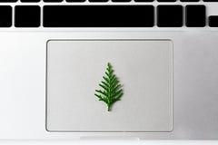 Tema de la Navidad Poco árbol de pino del Año Nuevo que pone en el panel táctil del ordenador portátil Fotografía de archivo