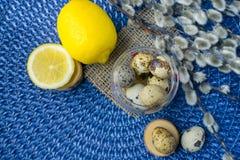 Tema de Pascua, decoración del día de fiesta, limón, pequeños tocones, wi del gatito Foto de archivo