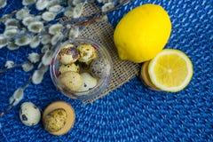 Tema de Pascua, decoración del día de fiesta, limón, pequeños tocones, wi del gatito Fotografía de archivo