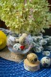 Tema de Pascua, decoración del día de fiesta, limón, pequeños tocones, wi del gatito Fotografía de archivo libre de regalías