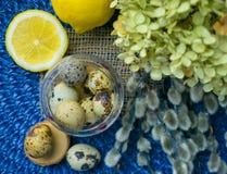 Tema de Pascua, decoración del día de fiesta, limón, pequeños tocones, wi del gatito Imágenes de archivo libres de regalías