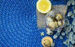 Tema de Pascua, decoración del día de fiesta, limón, pequeños tocones, wi del gatito Fotos de archivo libres de regalías