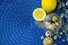 Tema de Pascua, decoración del día de fiesta, limón, pequeños tocones, wi del gatito Imagenes de archivo