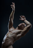 Tema del culturista y de la tira: hermoso con el hombre desnudo bombeado de los músculos que presenta en el estudio en un fondo o Foto de archivo libre de regalías