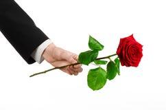 Tema del giorno delle donne e di San Valentino: la mano dell'uomo in un vestito che giudica una rosa rossa isolata su fondo bianc Immagini Stock