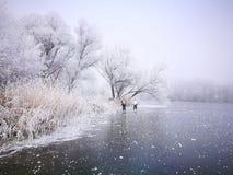 Tema del invierno Imágenes de archivo libres de regalías