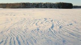 Tema del invierno Campo y bosque en la nieve en tiempo soleado y gran helada Foto de archivo