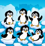 Tema del invierno con los pingüinos   Imágenes de archivo libres de regalías