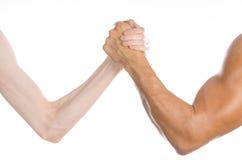 Tema del levantamiento de pesas y de la aptitud: mano fina del pulso y un brazo fuerte grande aislado en el fondo blanco en estud Imágenes de archivo libres de regalías