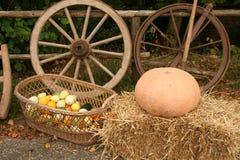 Tema del otoño Foto de archivo libre de regalías