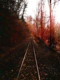 Tema del otoño Imagen de archivo