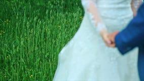 Tema del weeding que detiene a recienes casados de las manos almacen de metraje de vídeo