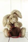 Tema di amore di anniversario o di Teddy Bear Bunny With Valentine Fotografia Stock